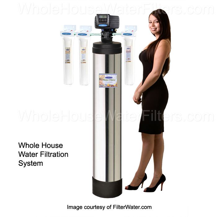 Eagle 2000A Whole House Water Filter,Whole house filter system